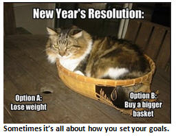 New Years Resolutions - cat