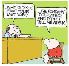 bad job interview - Ziggy