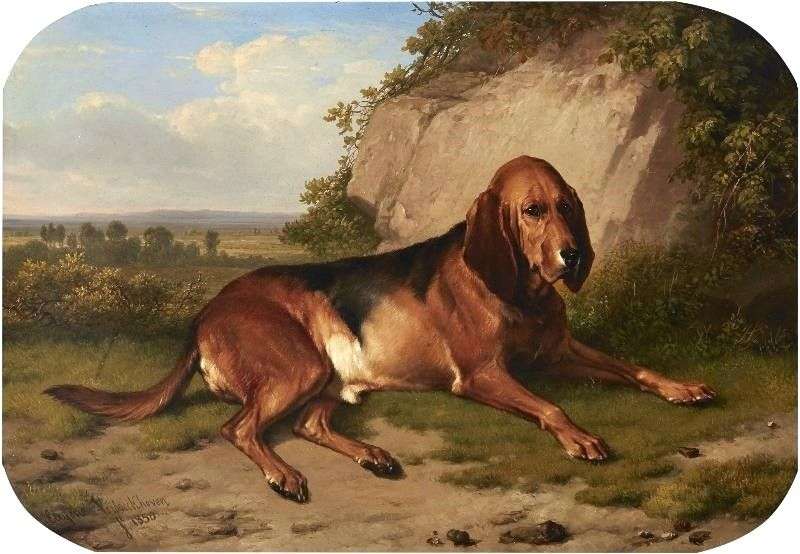 Jefferson loved his dogs, especially his pride bloodhound, Bailey, shown here. Jefferson, while a genius in many ways, made several mistakes in life – most notably entrusting Bailey to his son, Bradley.