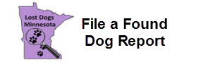 File a Found Dog Report