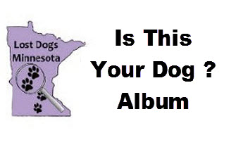 Is-This-Your-Dog-Album