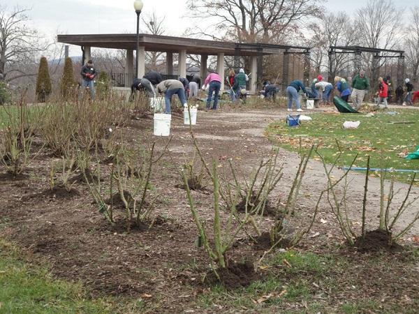 Winterizing A Garden Workshop 2010