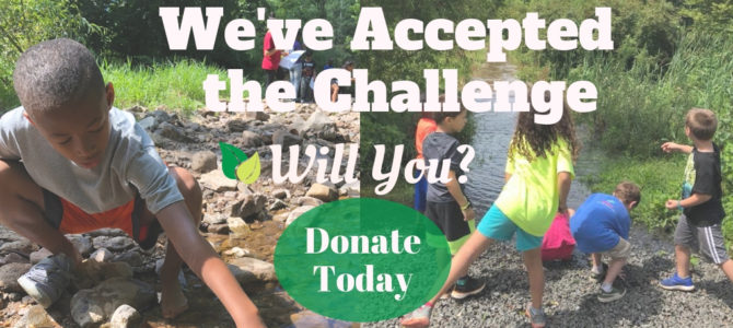 We've Accepted the Challenge: Will You?