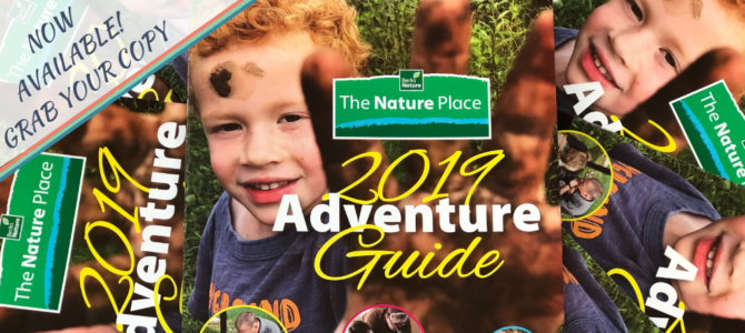 2019 Adventure Guides Available Now