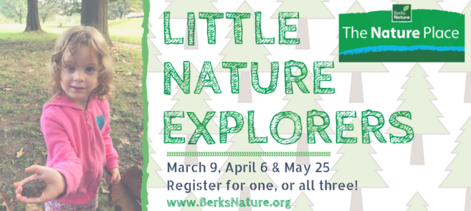 Little Nature Explorers