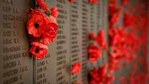 Poppy Memorial Day United States