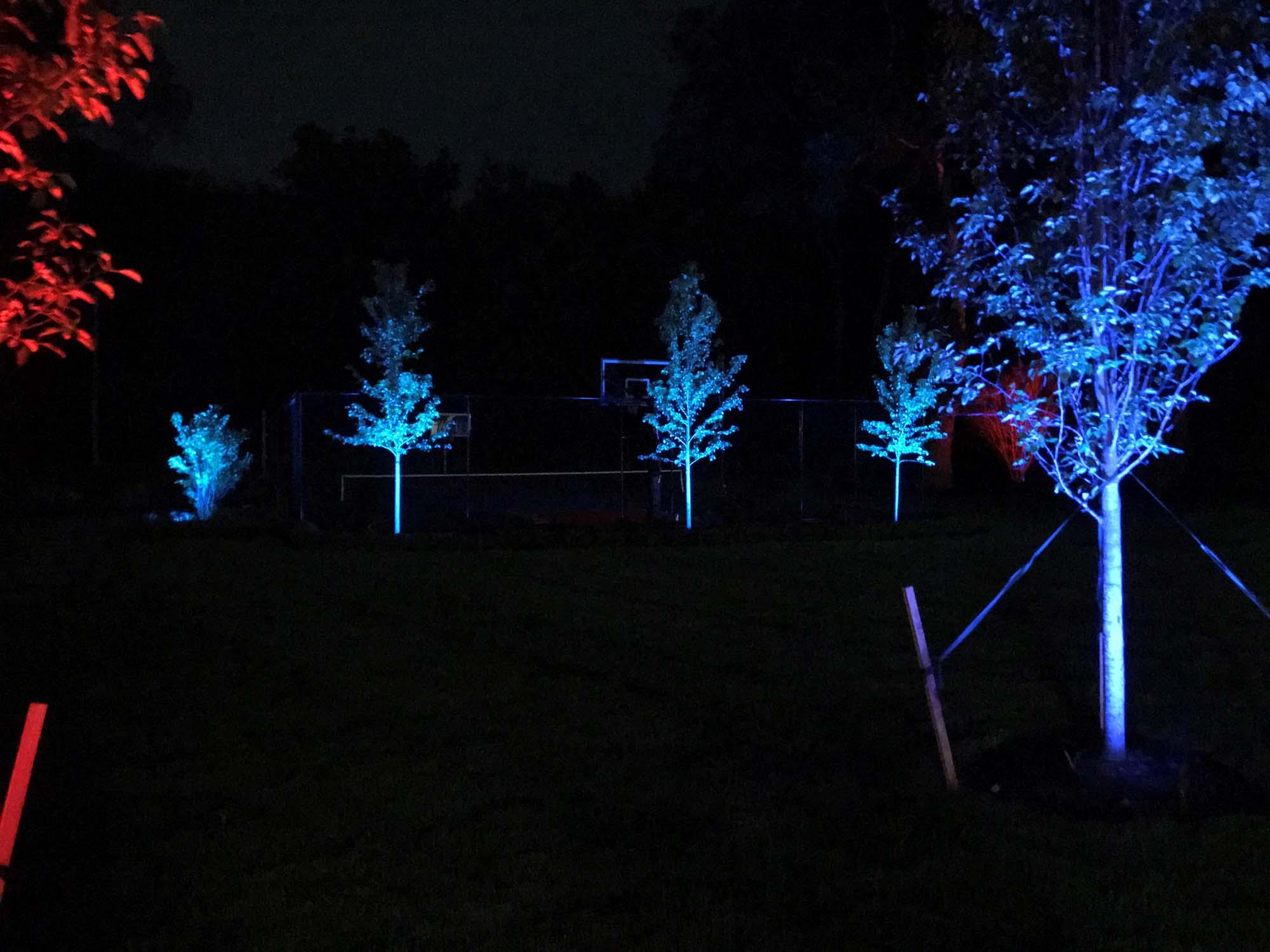 maddox color lighting pic 3