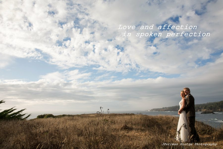 Love and affection in spoken perfection. Newly married bride and groom stand together on a bluff in Mendocino County, California soon after Elope Mendocino wedding.