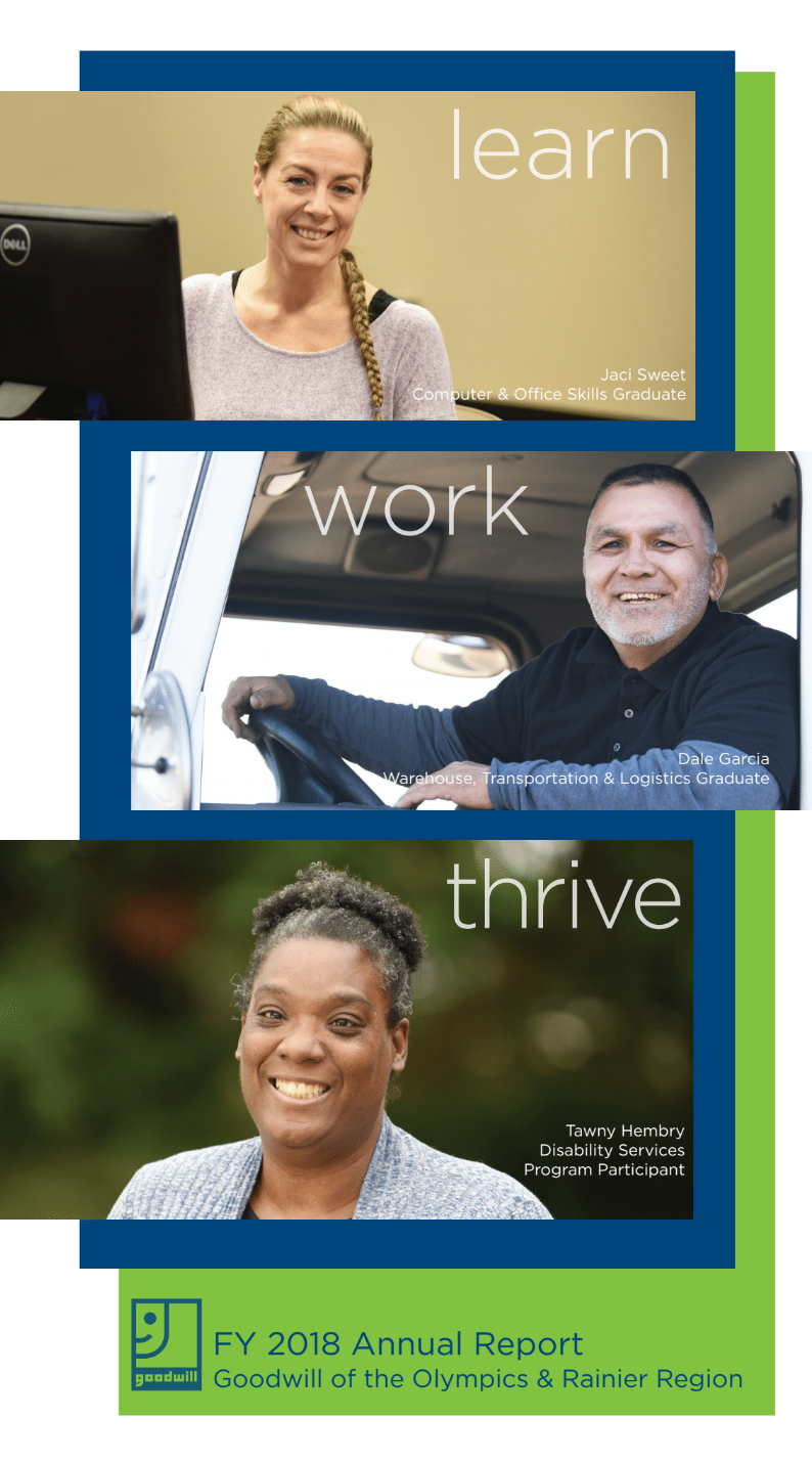 Goodwill annual report 2018