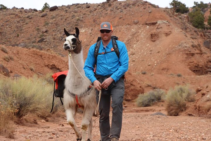 llama 1 hour day hike capitol reef utah