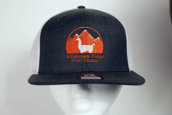 black and white embroidered llama hat