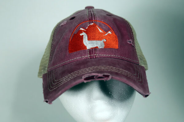 Violet Women's Llama Hat Distressed