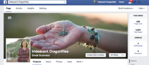 Iridescent Dragonflies Facebook page