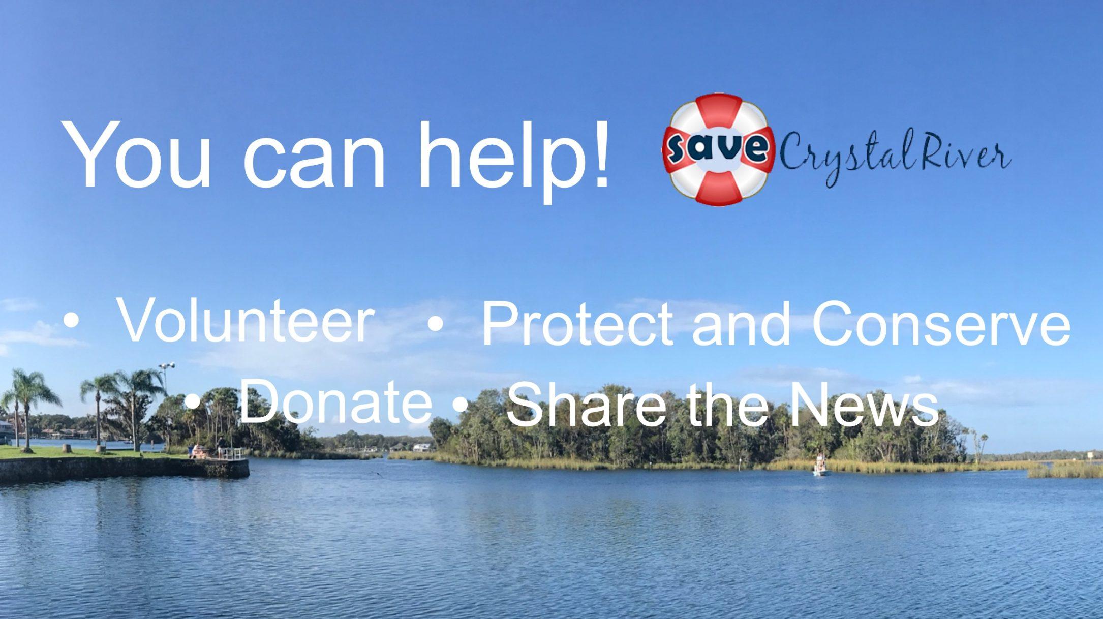Save Crystal River Kings Bay
