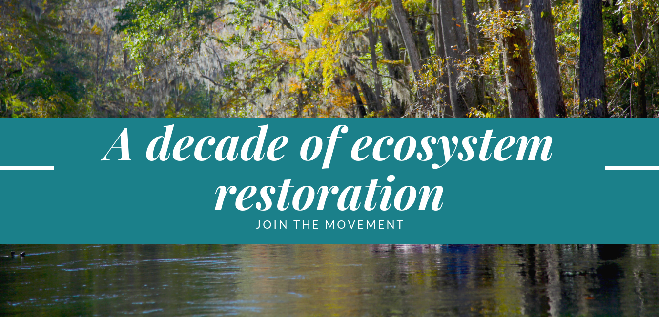 A decade of ecosystem restoration