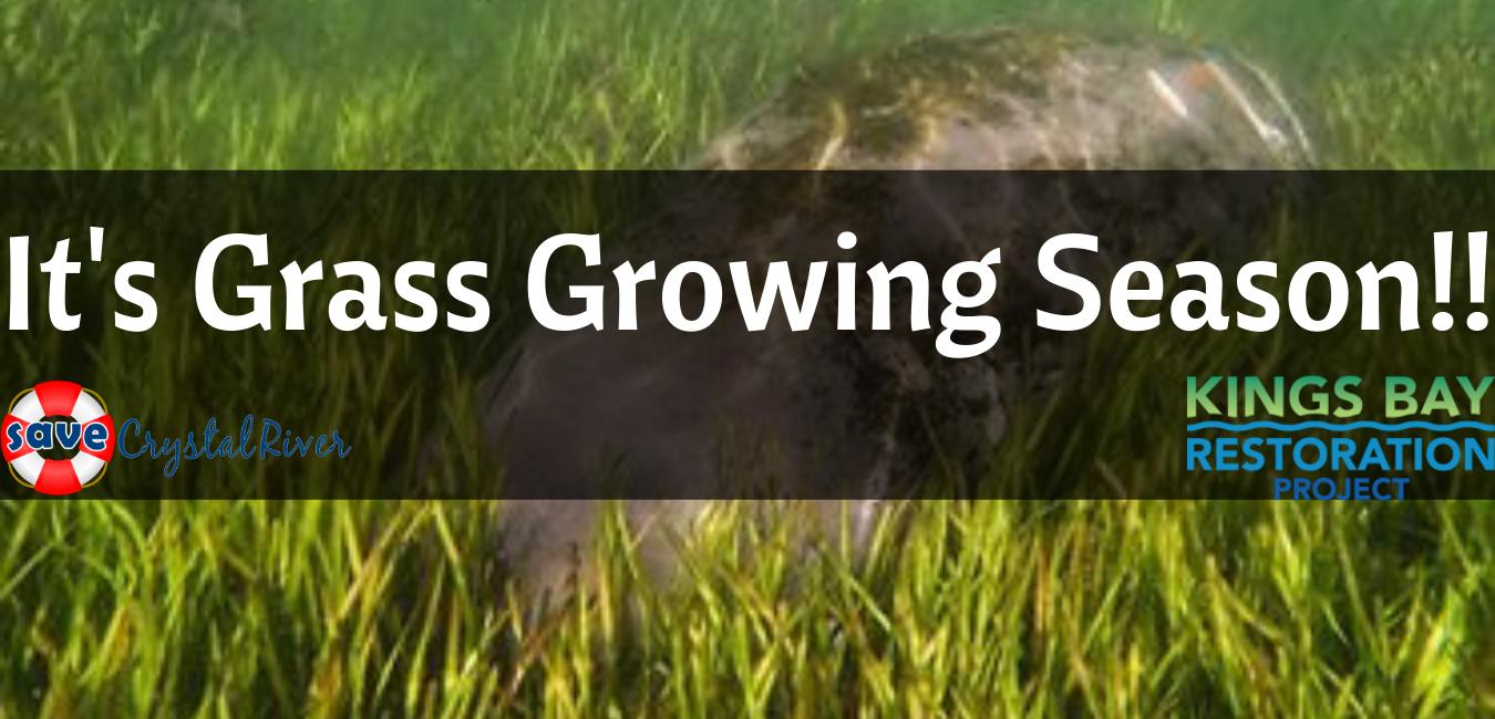 Grass Growing Season!