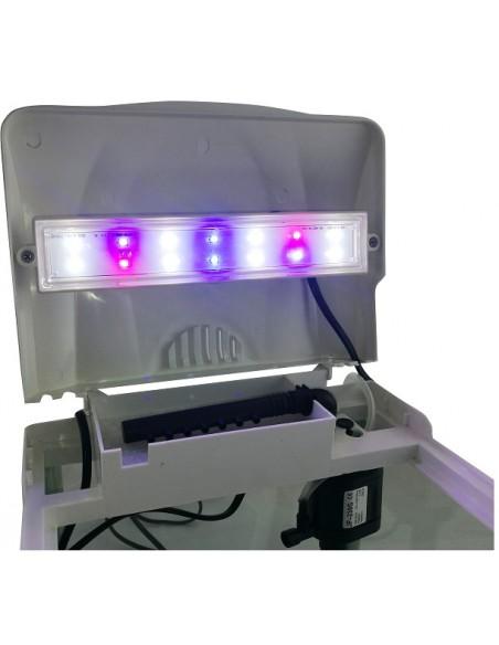 sunsun-luz-filtro