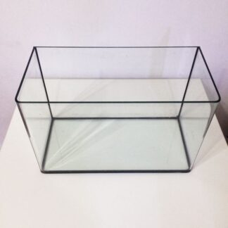 1ft_curved_glass_fish_tank_1443279712_1ffec43a