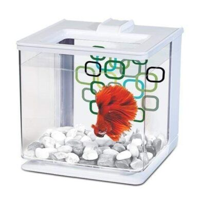 marina-betta-ez-care-kit-2-5l-white-2296322097175_600x