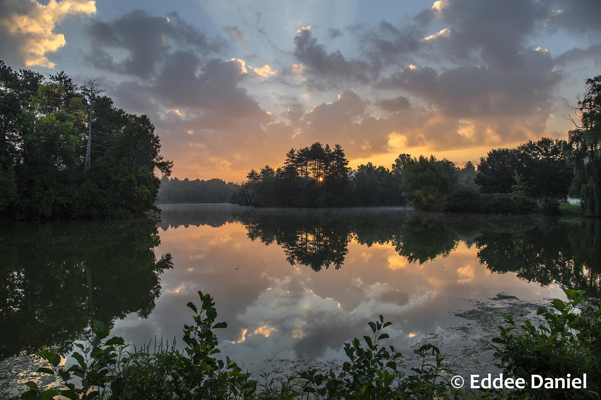 A sunrise over the treeline and a lake