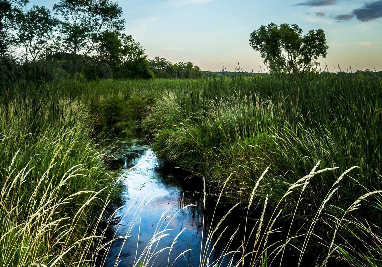 Julian Kegel - Little Oconomowoc River Headwaters at Camp Quad