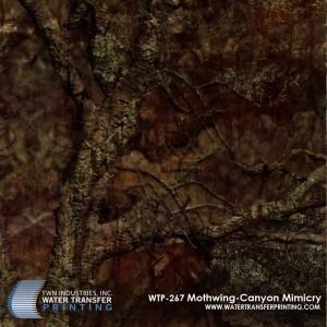 WTP-267 Mothwing-Canyon Mimicry