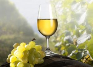 cropped-cropped-Chardonnay-Grapes-1.jpg
