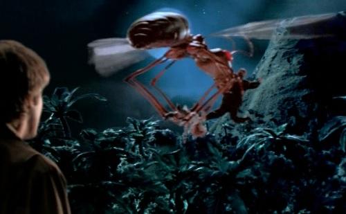monster island carmen kidnap