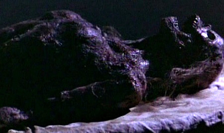 xtro 2 corpse