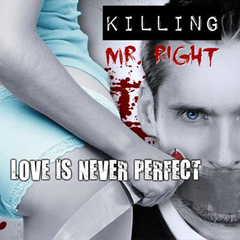 killing mr perfect cover