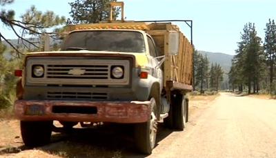 bunnyman truck.jpg