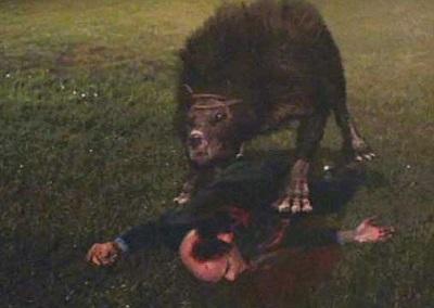 monsterwolf still