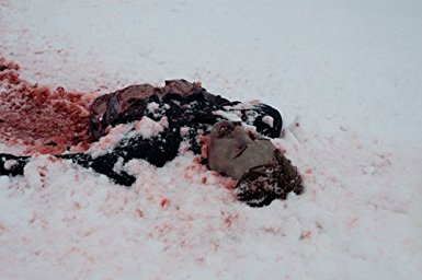 hypothermia half corpse