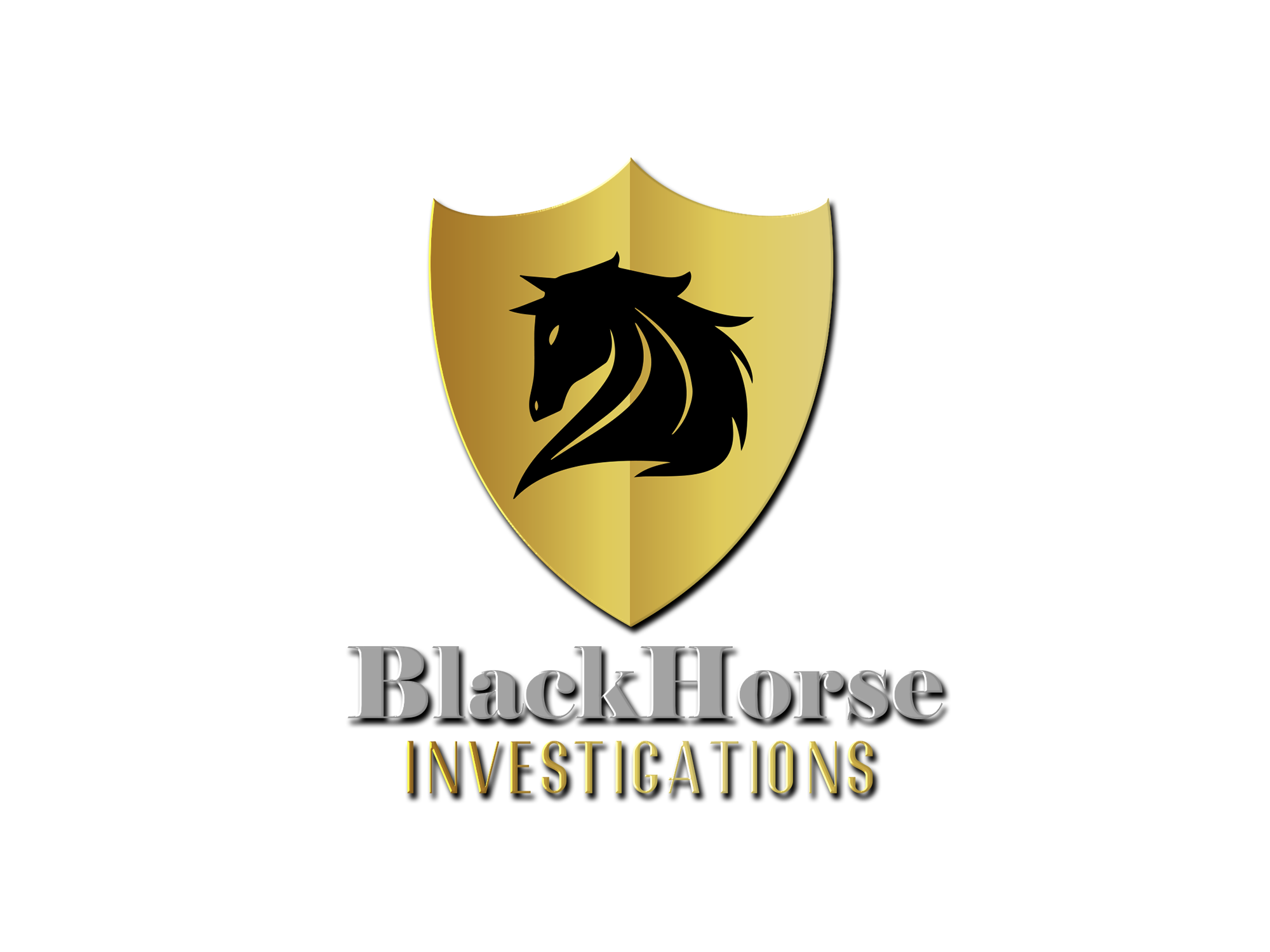 Blackhorse Investigations LLC
