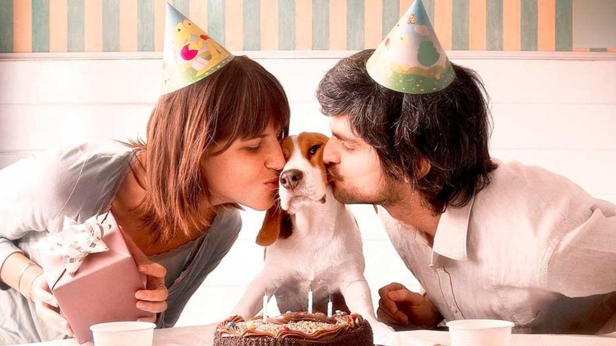 personas festejando el cumpleaños de su perro