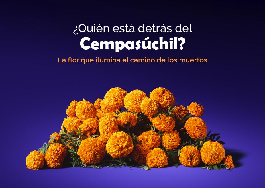 CEMPASUCHIL