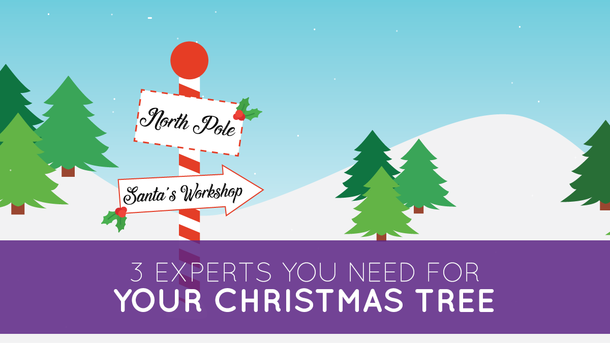 3 experts you need for your christmas tree