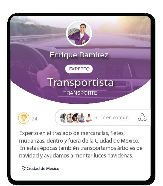 Experto transportista