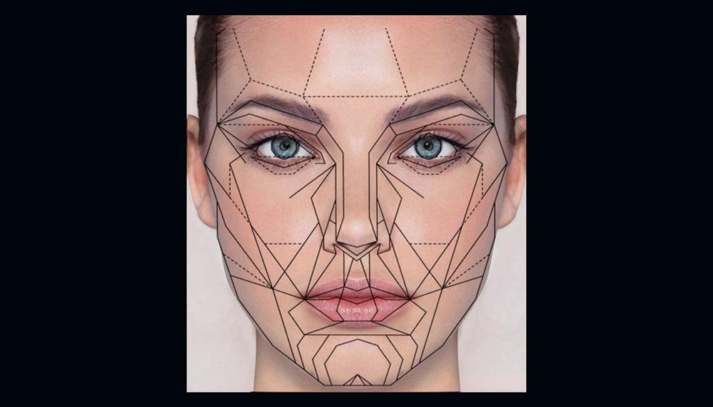 Ideal facial symmetry