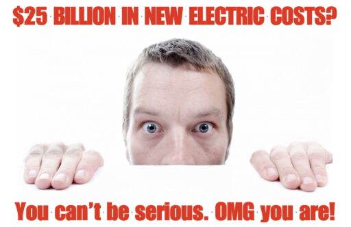 ny electric sector