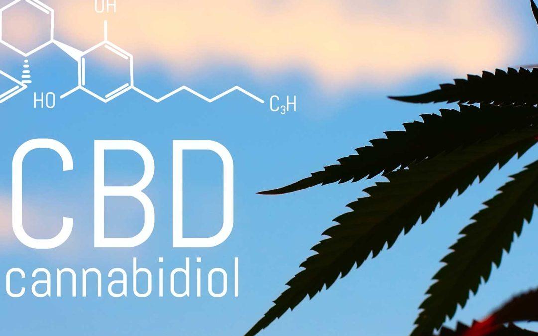 Marijuana CBD vs. Hemp CBD