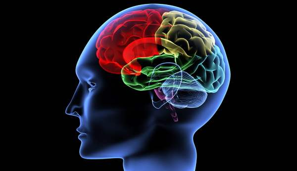 Clutter and The Brain