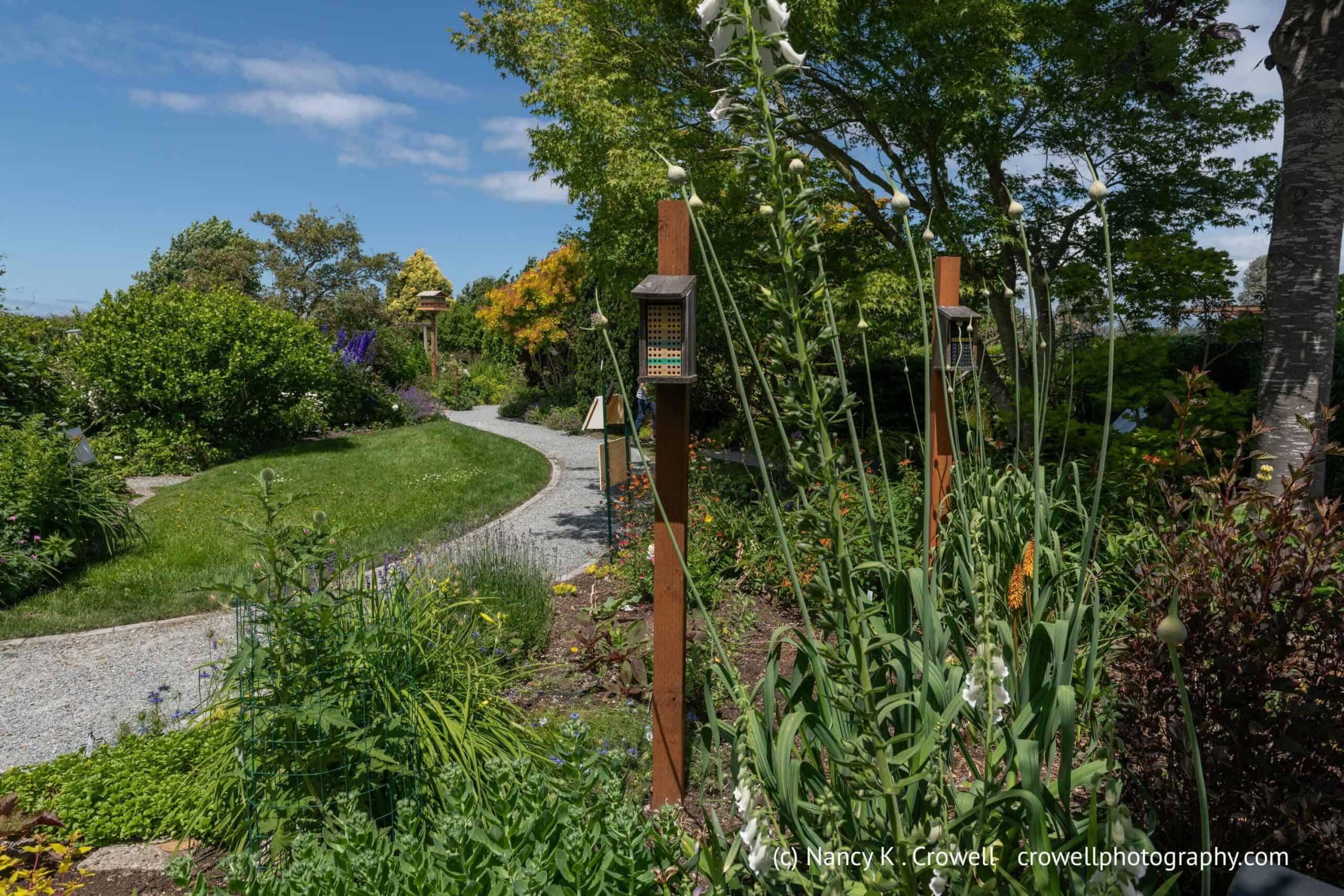 Garden Path Improvements