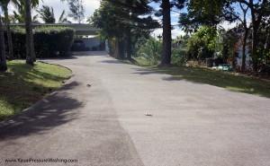 drivewayconcretecleaningkauai