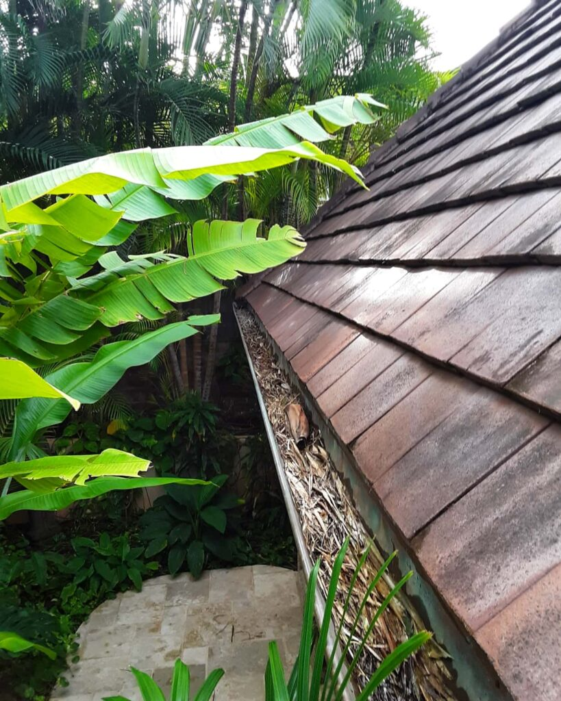 Professional gutter cleanings
