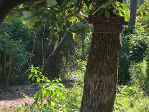 Grace trail sign egret acres