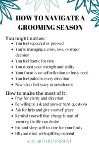 Seasons change | Grooming season | quick tips for navigating a grooming season