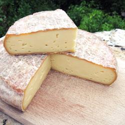 Formaggio francese Saint-Nectaire Foodpairing birra belga e formaggi francesi