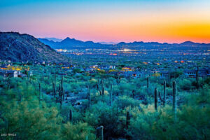 dessert landscape at night - buy a home with Phoenix and Scottsdale Realtor Sonoran Home Group