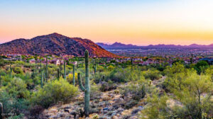 Dessert Landscape - Sell a Home with Phoenix and Scottsdale Realtor Sonoran Home Group